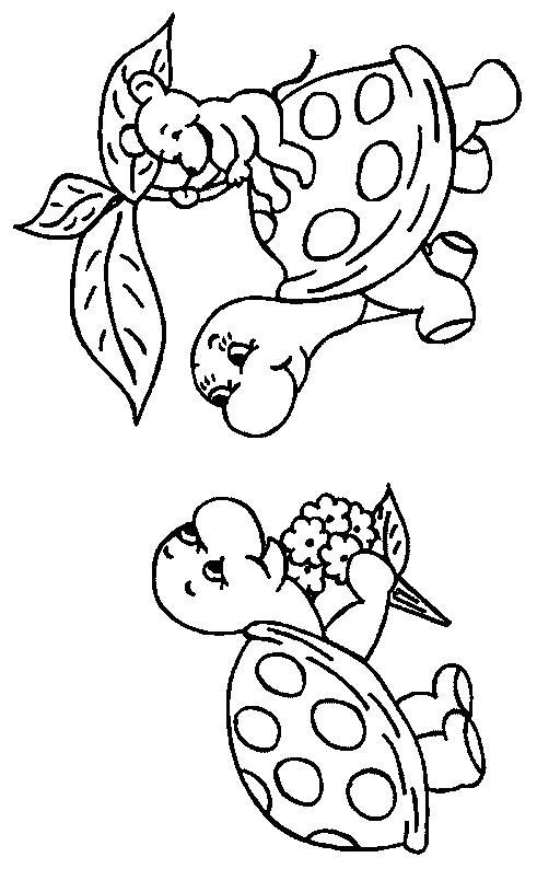Planse De Colorat Animale Broaste Testoase De Colorat P24
