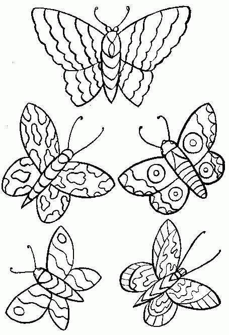 Planse De Colorat Animale Fluturasi De Colorat P21 Desene