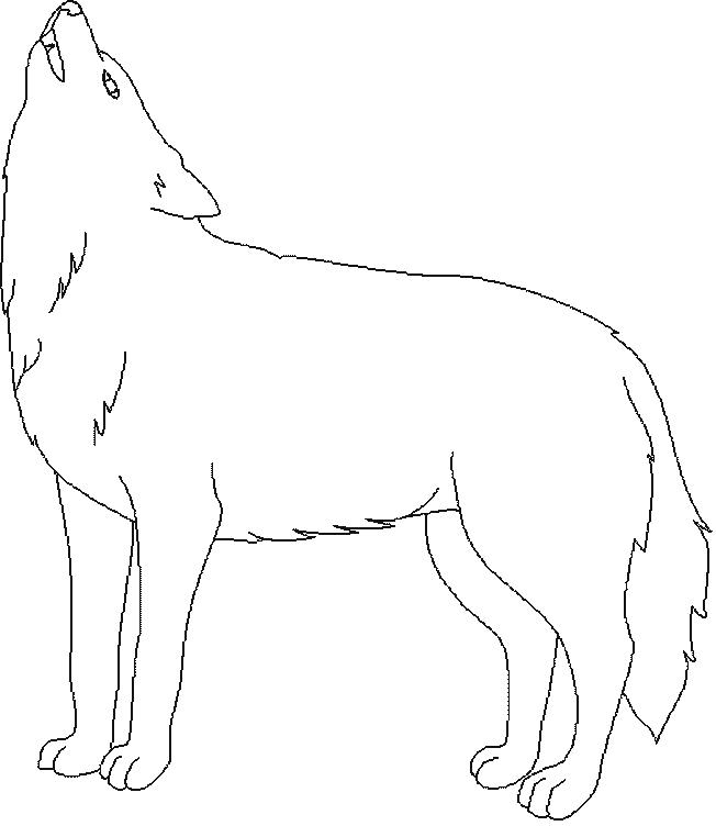 Trei lupi mici - Trilulilu Video Animatie - YouTube