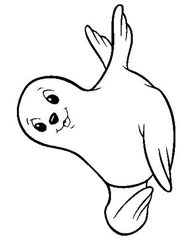 Planse De Colorat Cu Animale Morse Si Foci Desene De
