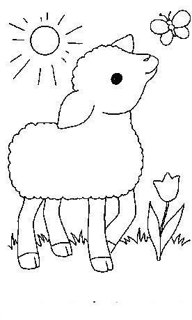 Planse De Colorat Animale Oi De Colorat P09 Desene De