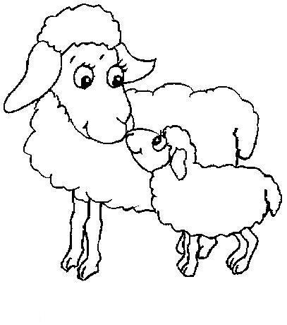 Planse De Colorat Animale Oi De Colorat P21 Desene De