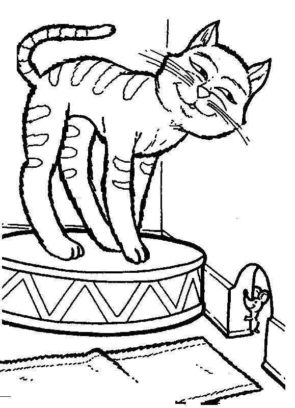 Animale pisici de colorat p29
