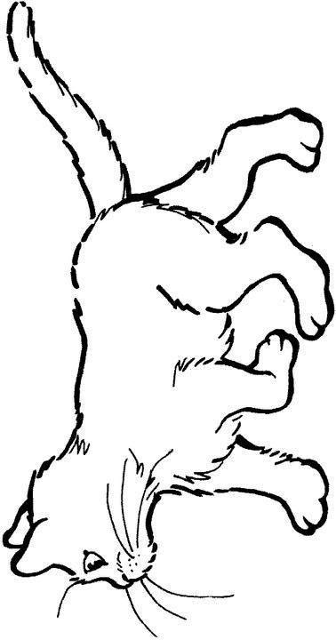 Planse De Colorat Animale Pisici De Colorat P71 Desene De