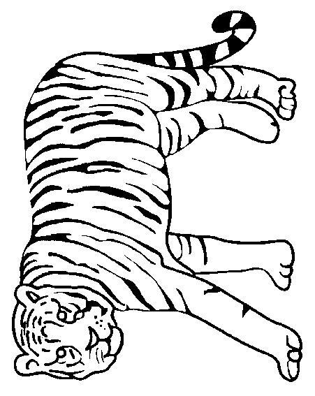 Planse De Colorat Animale Tigri De Colorat P38 Desene De