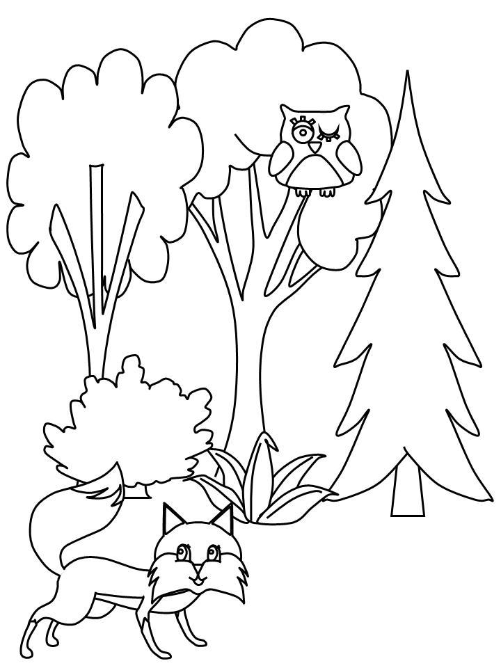 Planse De Colorat Copaci De Colorat P03 Desene De
