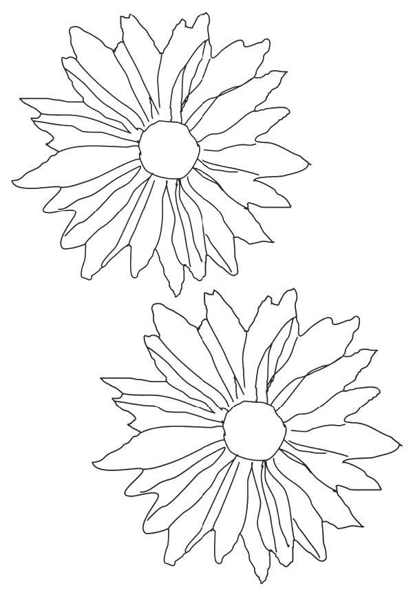 Flori de colorat p58