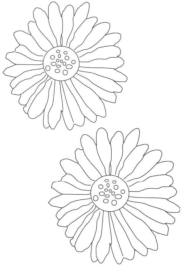 Flori de colorat p59