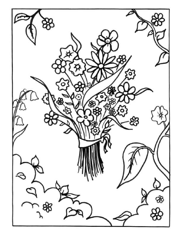 Flori de colorat p64