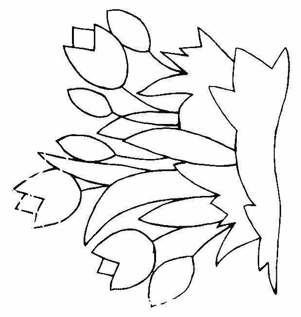 Planse De Colorat Flori Lalele De Colorat P19 Desene De