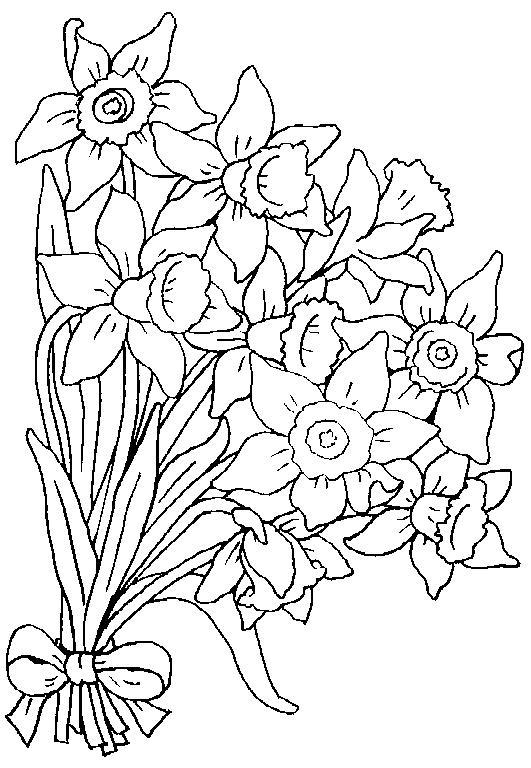 Planse De Colorat Flori Narcise De Colorat P02 Desene De