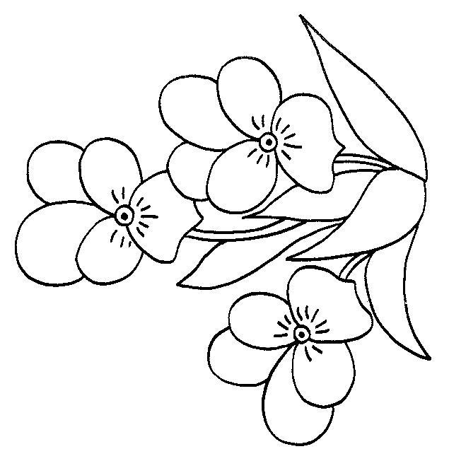 Planse De Colorat Flori Panselute De Colorat P09 Desene De