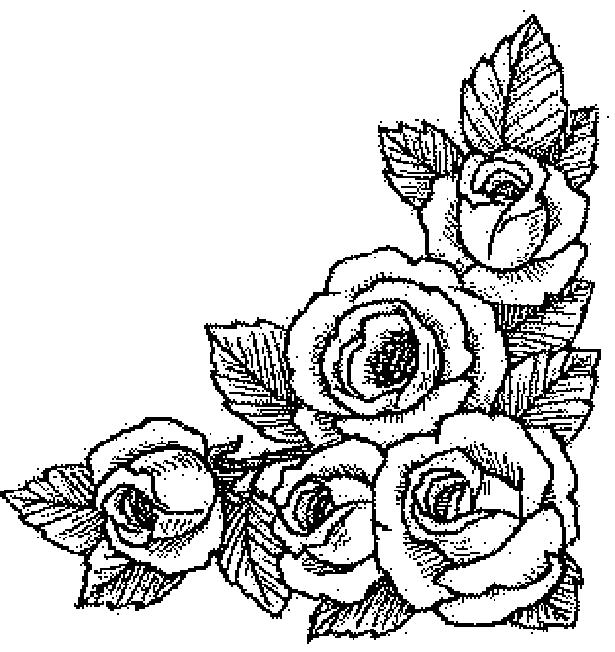 Flori Trandafiri Colorat Planse Hello Kitty Desene
