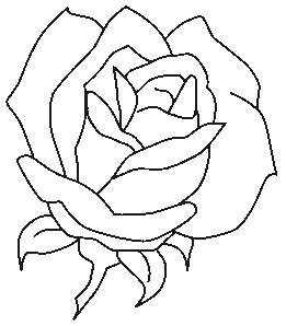 planse de colorat flori trandafiri de colorat p08 desene de colorat flori trandafiri de. Black Bedroom Furniture Sets. Home Design Ideas
