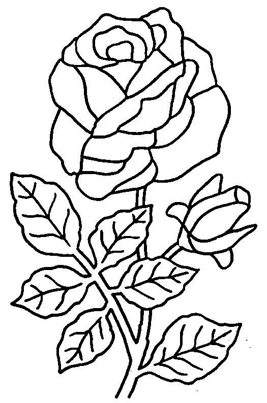 Planse Colorat Flori Trandafiri Desene