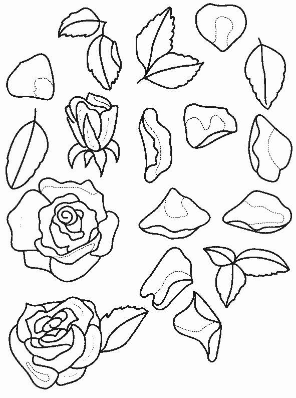 Planse De Colorat Flori Trandafiri De Colorat P14 Desene