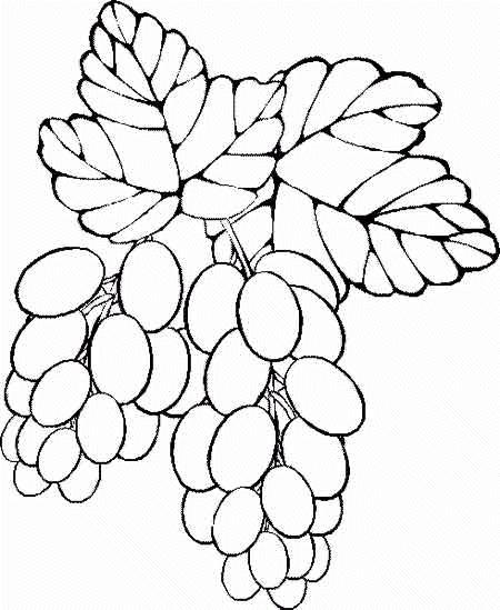 Planse De Colorat Fructe Si Legume De Colorat P21 Desene