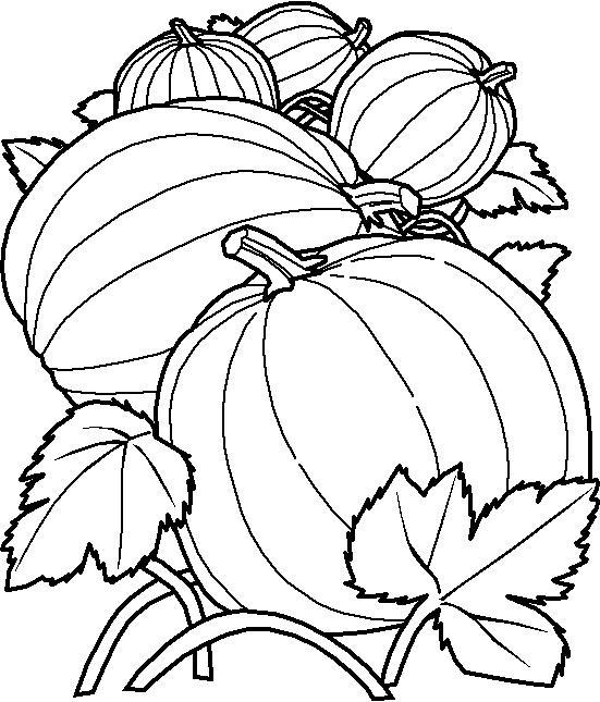 Planse De Colorat Fructe Si Legume De Colorat P38 Desene