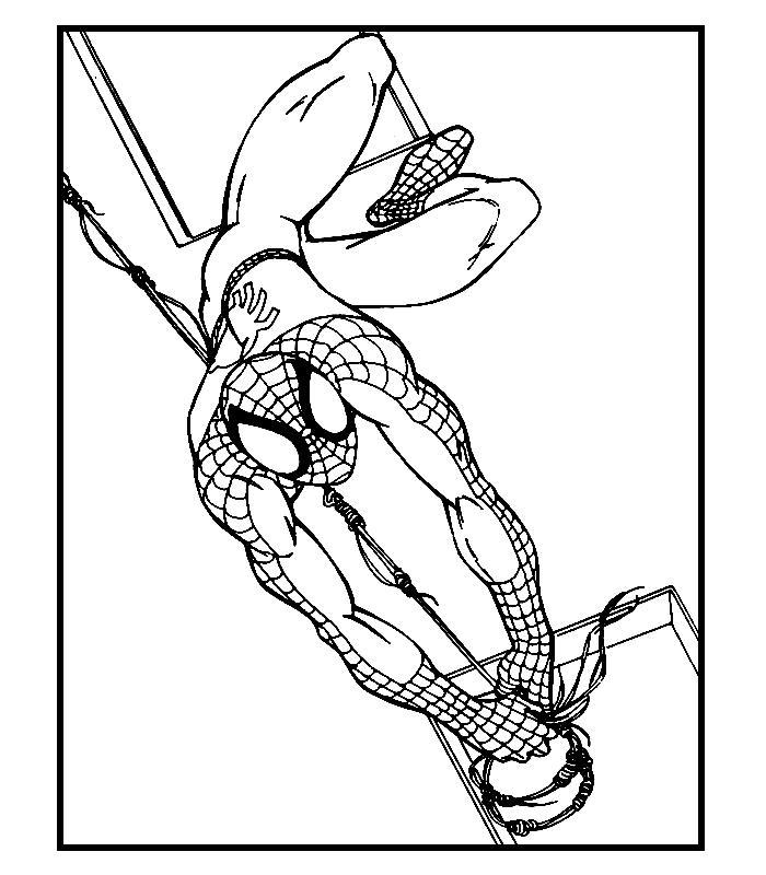Spiderman de colorat p05