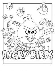 plansa de colorat angry birds #5