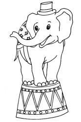 plansa de colorat animale elefanti #3