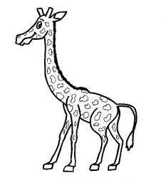 plansa de colorat animale girafe #16