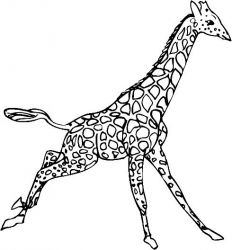 plansa de colorat animale girafe #20