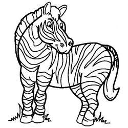plansa de colorat animale zebre #7