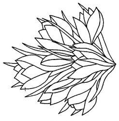 Planse De Colorat Cu Flori Desene De Colorat Cu Flori