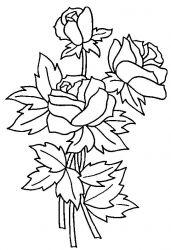 Planse De Colorat Cu Flori Trandafiri Desene De Colorat Cu