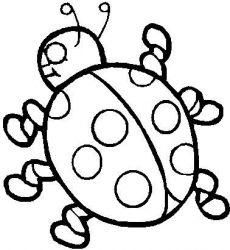 Planse De Colorat Cu Insecte Buburuze Desene De Colorat Cu