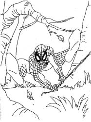 plansa de colorat spiderman #39
