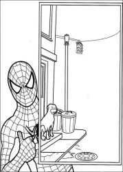 plansa de colorat spiderman #44
