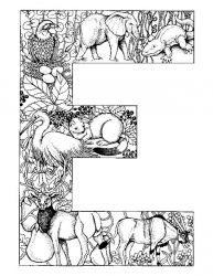 plansa de colorat alfabetul cu animale de colorat p05
