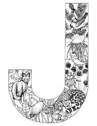 plansa de colorat alfabetul cu animale de colorat p10
