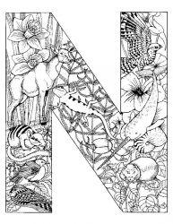 plansa de colorat alfabetul cu animale de colorat p14