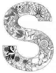plansa de colorat alfabetul cu animale de colorat p19