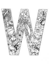 plansa de colorat alfabetul cu animale de colorat p23