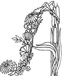 plansa de colorat alfabetul cu flori de colorat p01