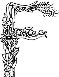 plansa de colorat alfabetul cu flori de colorat p06