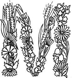 plansa de colorat alfabetul cu flori de colorat p13