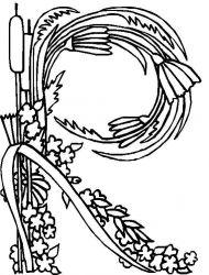 plansa de colorat alfabetul cu flori de colorat p18