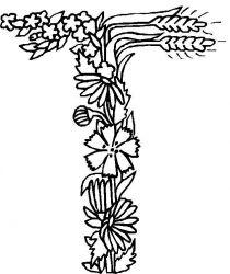 plansa de colorat alfabetul cu flori de colorat p20