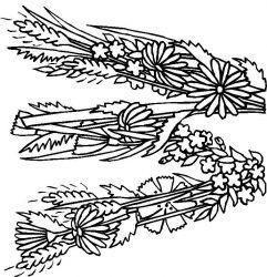 plansa de colorat alfabetul cu flori de colorat p23