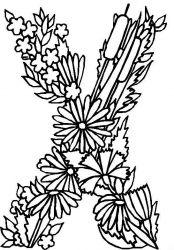 plansa de colorat alfabetul cu flori de colorat p24