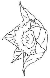 plansa de colorat animale arici de colorat p02