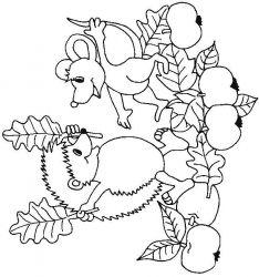 plansa de colorat animale arici de colorat p03