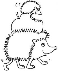 plansa de colorat animale arici de colorat p05