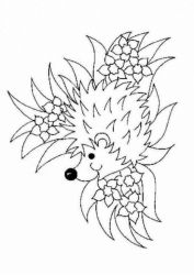 plansa de colorat animale arici de colorat p10