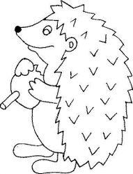 plansa de colorat animale arici de colorat p11
